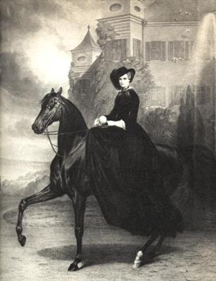 sissi-cavallo