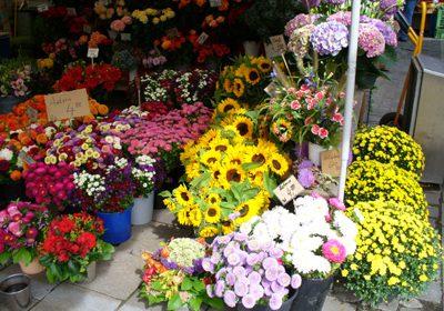 viktualienmarkt_07